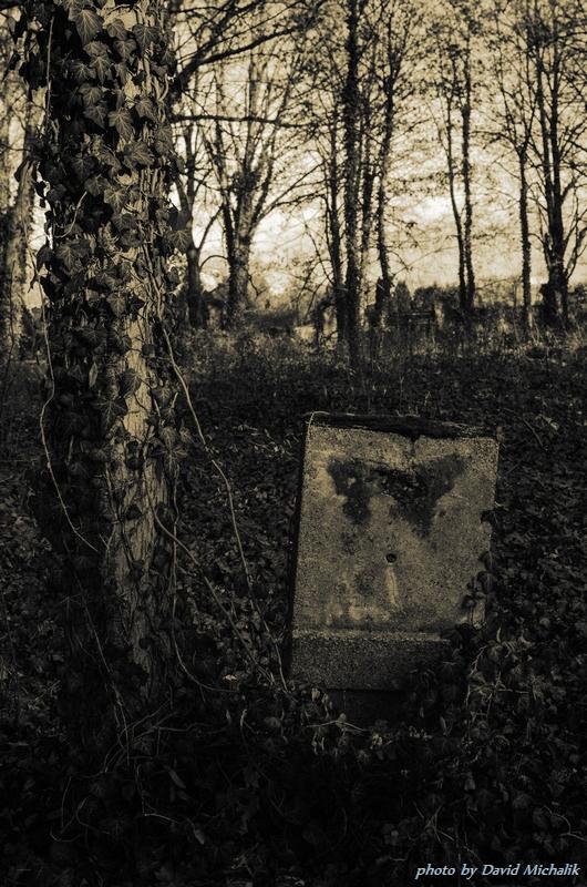 Na náhrobní kámen zde už téměř nenarazíte